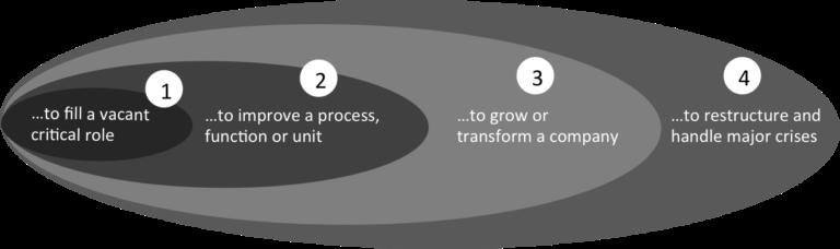 Interim Management Examples